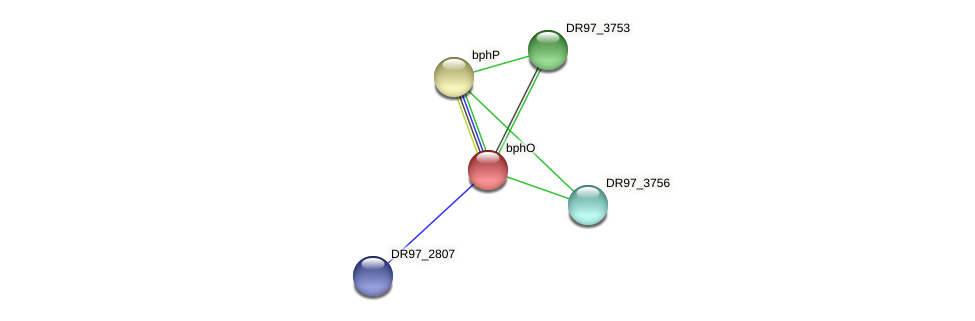 DR97_3755 protein (Pseudomonas aeruginosa) - STRING interaction network