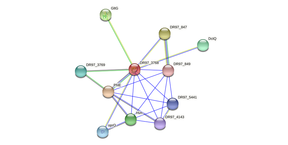 oprB_2 protein (Pseudomonas aeruginosa) - STRING interaction network