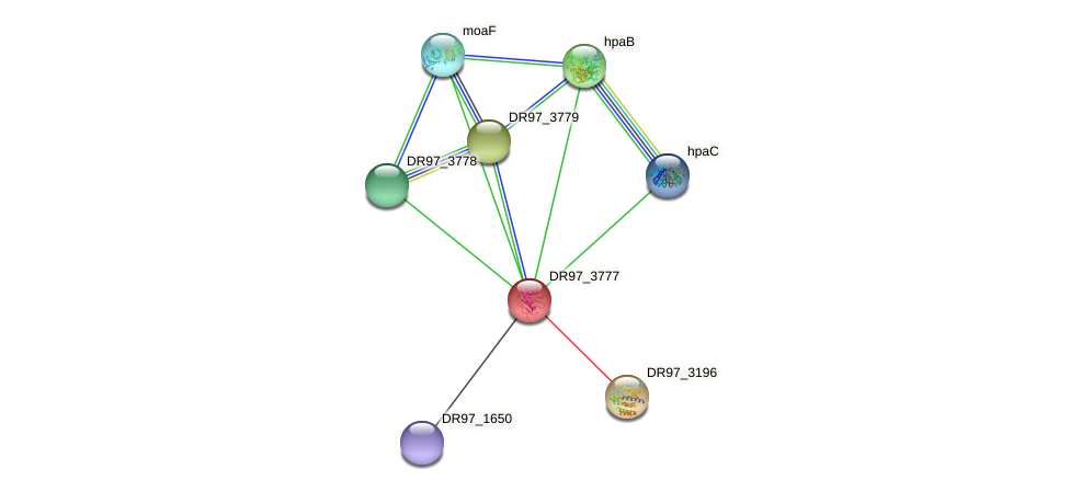 DR97_3777 protein (Pseudomonas aeruginosa) - STRING interaction network