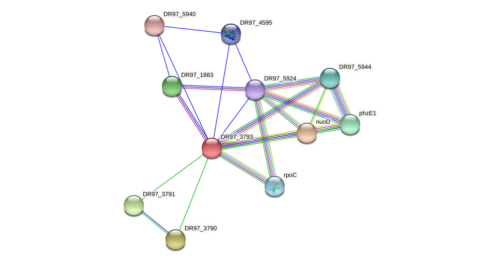 DR97_3793 protein (Pseudomonas aeruginosa) - STRING interaction network
