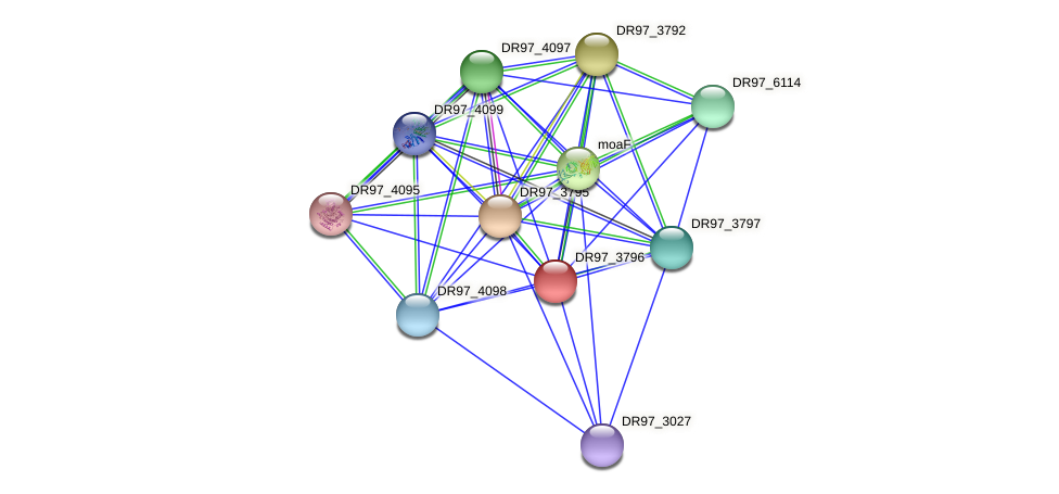 DR97_3796 protein (Pseudomonas aeruginosa) - STRING interaction network