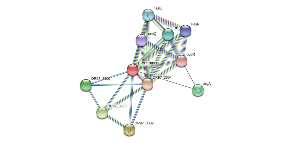 DR97_3803 protein (Pseudomonas aeruginosa) - STRING interaction network