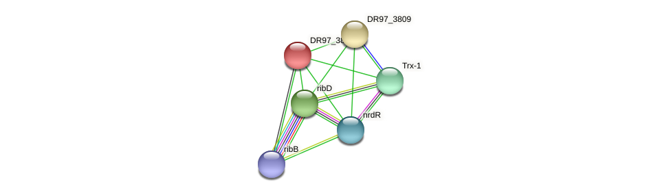 DR97_3808 protein (Pseudomonas aeruginosa) - STRING interaction network