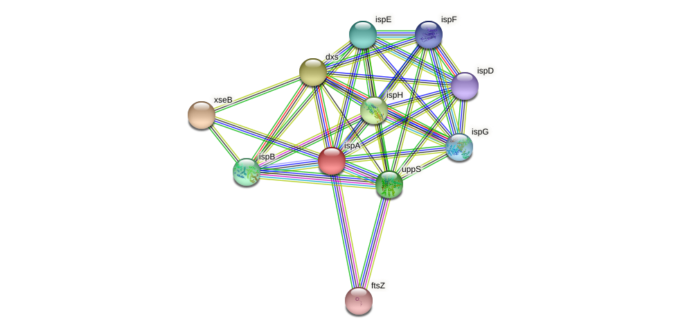 GGPS1 protein (Pseudomonas aeruginosa) - STRING interaction network