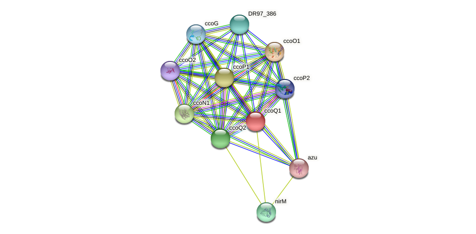 DR97_383 protein (Pseudomonas aeruginosa) - STRING interaction network