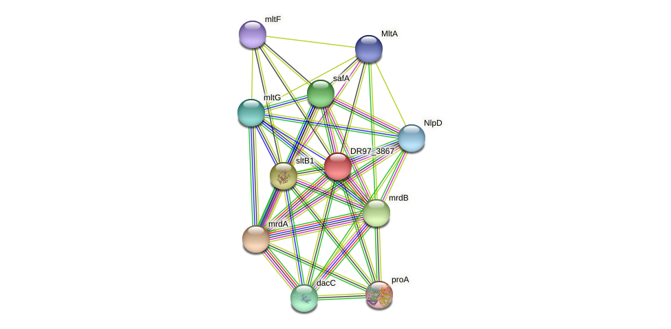 DR97_3867 protein (Pseudomonas aeruginosa) - STRING interaction network