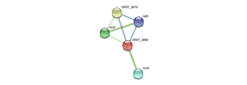 DR97_3880 protein (Pseudomonas aeruginosa) - STRING interaction network