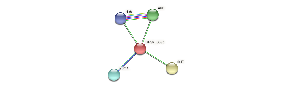 DR97_3896 protein (Pseudomonas aeruginosa) - STRING interaction network