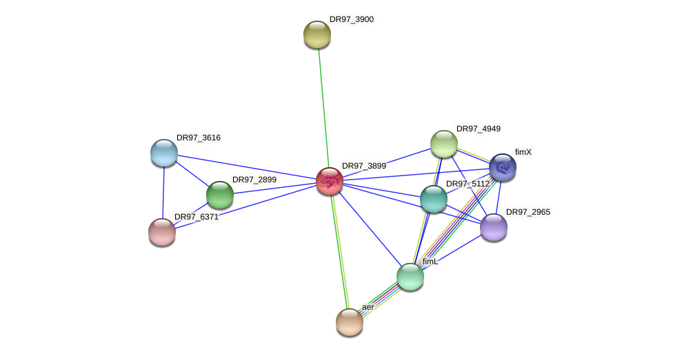 DR97_3899 protein (Pseudomonas aeruginosa) - STRING interaction network