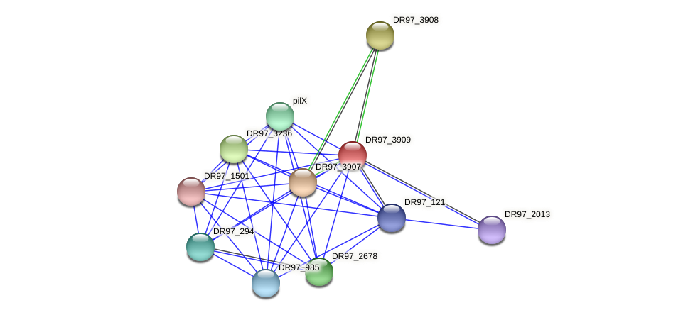 DR97_3909 protein (Pseudomonas aeruginosa) - STRING interaction network