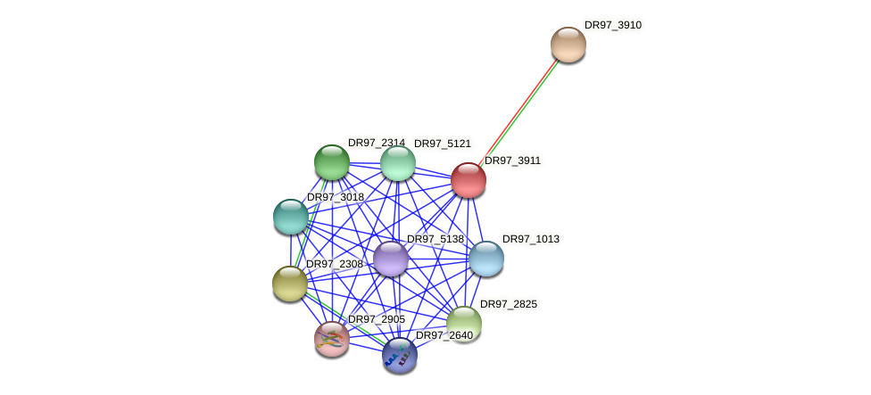 DR97_3911 protein (Pseudomonas aeruginosa) - STRING interaction network