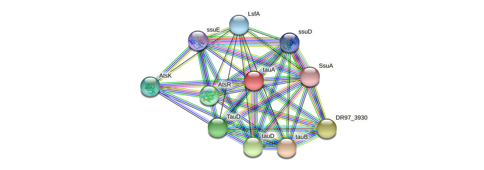 tauA protein (Pseudomonas aeruginosa) - STRING interaction network