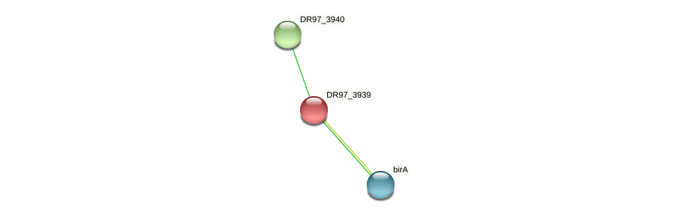 DR97_3939 protein (Pseudomonas aeruginosa) - STRING interaction network