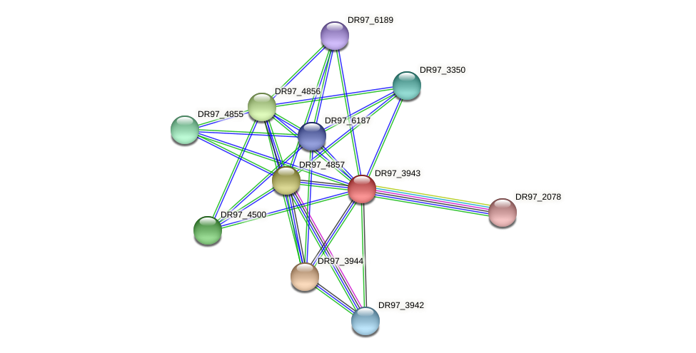 DR97_3943 protein (Pseudomonas aeruginosa) - STRING interaction network