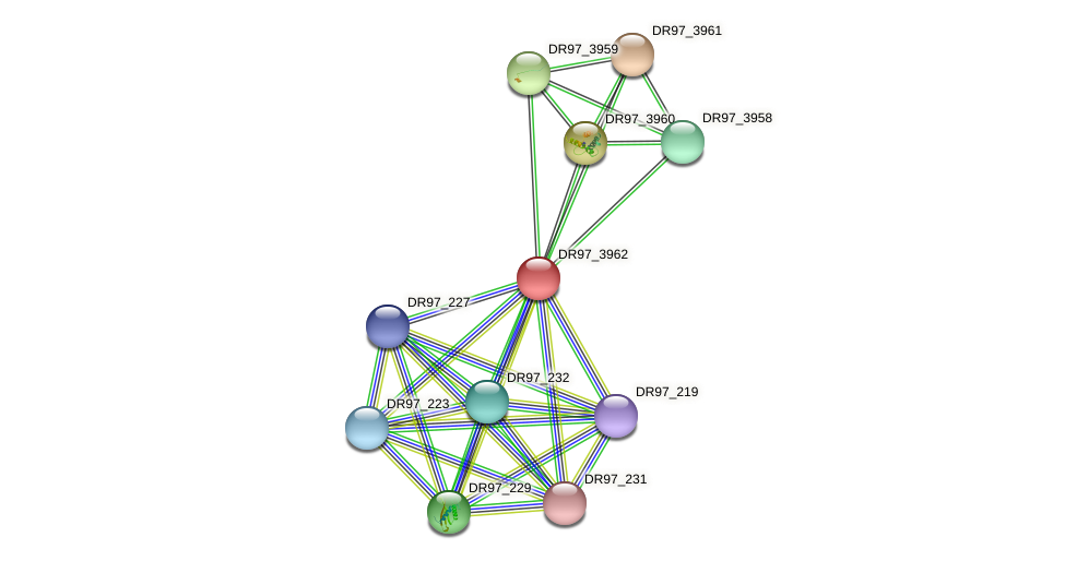 DR97_3962 protein (Pseudomonas aeruginosa) - STRING interaction network