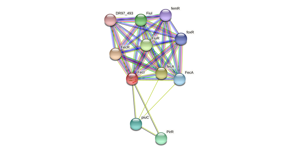 fecI_13 protein (Pseudomonas aeruginosa) - STRING interaction network