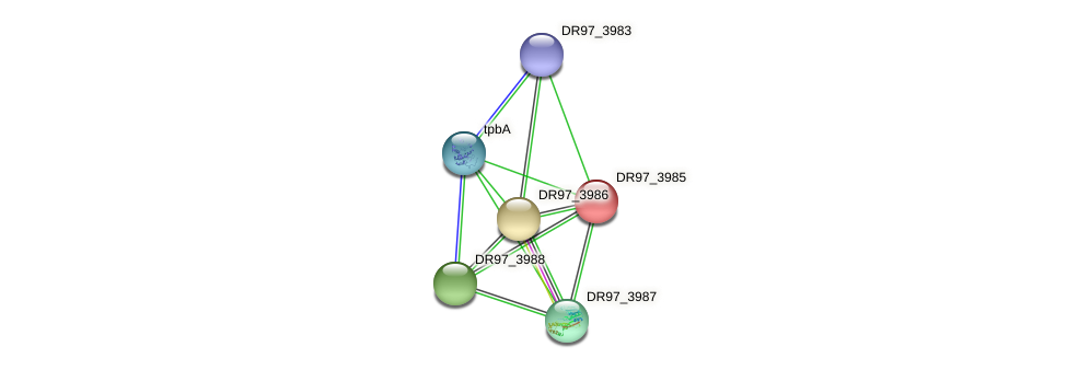 DR97_3985 protein (Pseudomonas aeruginosa) - STRING interaction network