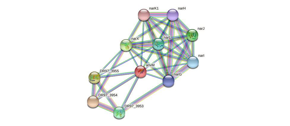 DR97_3989 protein (Pseudomonas aeruginosa) - STRING interaction network
