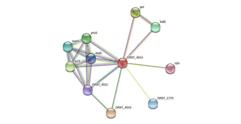 DR97_4014 protein (Pseudomonas aeruginosa) - STRING interaction network