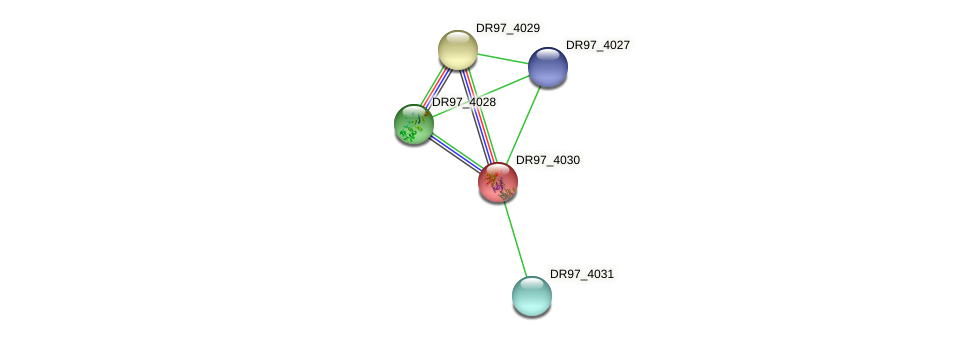 DR97_4030 protein (Pseudomonas aeruginosa) - STRING interaction network
