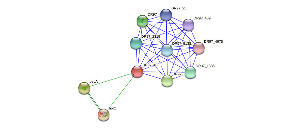 DR97_4033 protein (Pseudomonas aeruginosa) - STRING interaction network