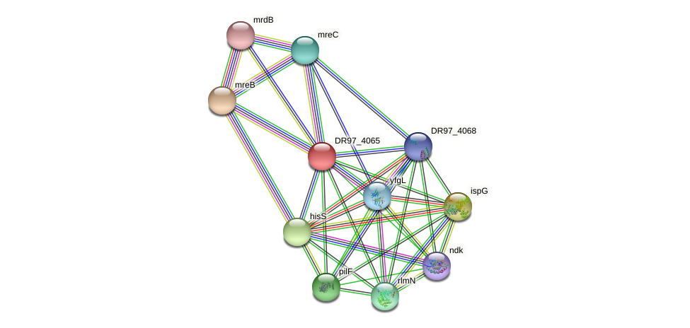 DR97_4065 protein (Pseudomonas aeruginosa) - STRING interaction network