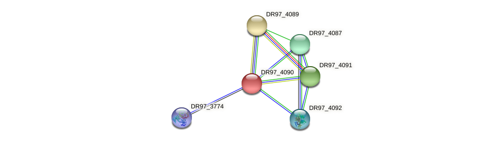DR97_4090 protein (Pseudomonas aeruginosa) - STRING interaction network