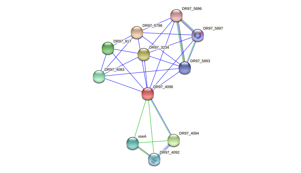 DR97_4096 protein (Pseudomonas aeruginosa) - STRING interaction network