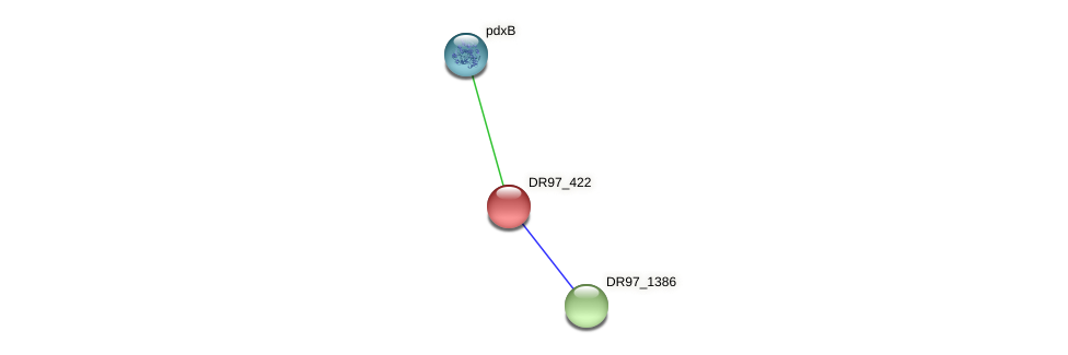 DR97_422 protein (Pseudomonas aeruginosa) - STRING interaction network