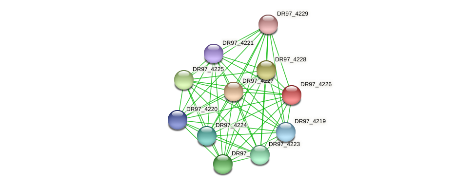 DR97_4226 protein (Pseudomonas aeruginosa) - STRING interaction network