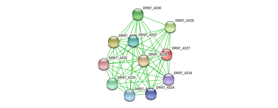 DR97_4227 protein (Pseudomonas aeruginosa) - STRING interaction network