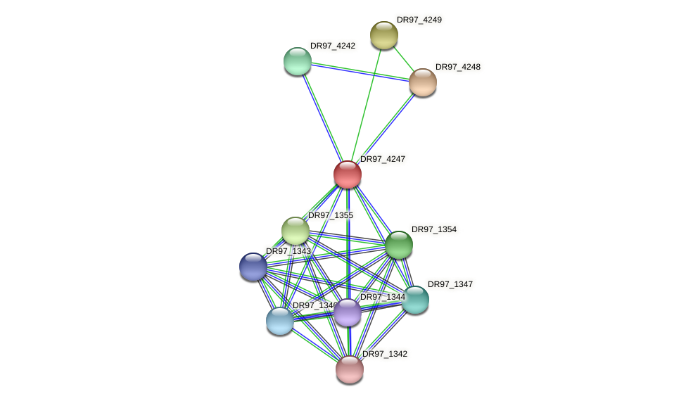 DR97_4247 protein (Pseudomonas aeruginosa) - STRING interaction network
