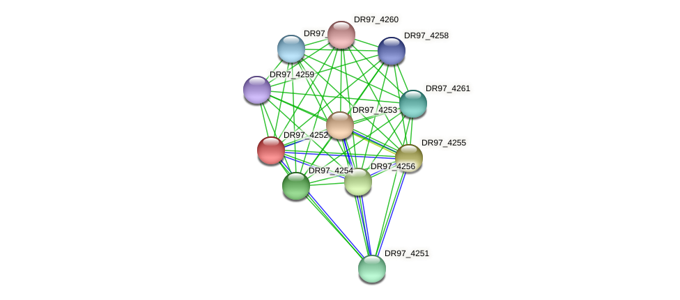 DR97_4252 protein (Pseudomonas aeruginosa) - STRING interaction network