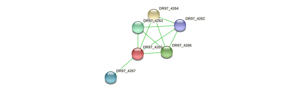 PACL_0435 protein (Pseudomonas aeruginosa) - STRING interaction network