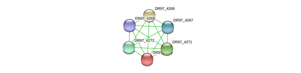DR97_4270 protein (Pseudomonas aeruginosa) - STRING interaction network