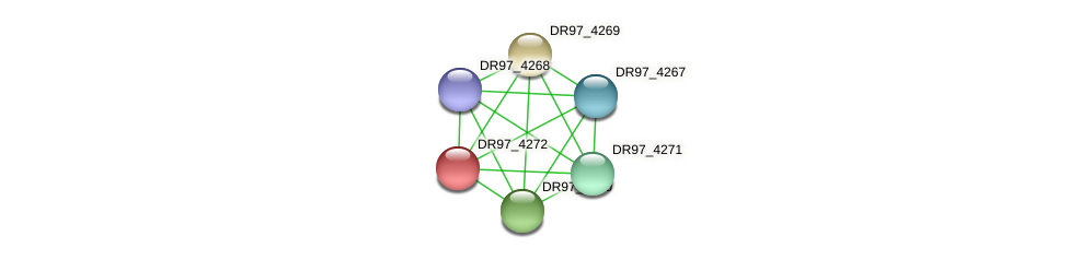 DR97_4272 protein (Pseudomonas aeruginosa) - STRING interaction network
