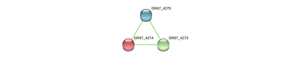 DR97_4274 protein (Pseudomonas aeruginosa) - STRING interaction network