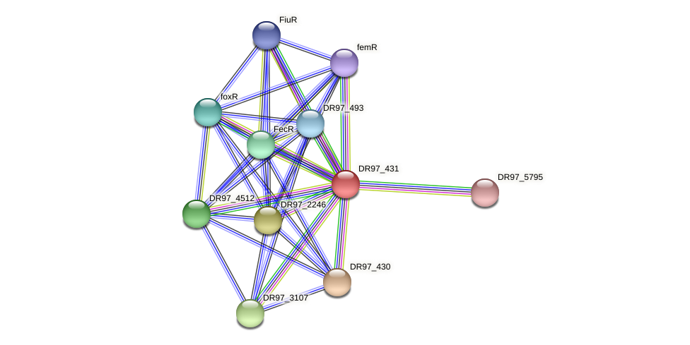 DR97_431 protein (Pseudomonas aeruginosa) - STRING interaction network