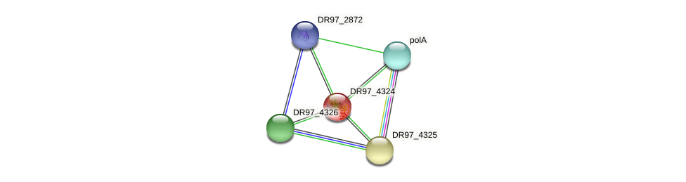 DR97_4324 protein (Pseudomonas aeruginosa) - STRING interaction network