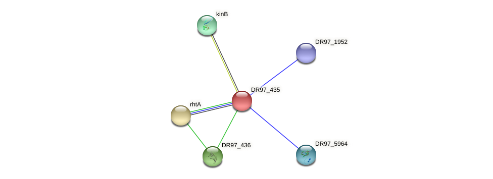 DR97_435 protein (Pseudomonas aeruginosa) - STRING interaction network