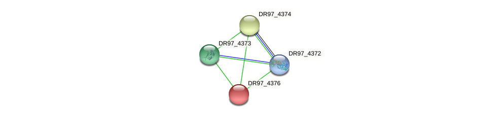DR97_4376 protein (Pseudomonas aeruginosa) - STRING interaction network