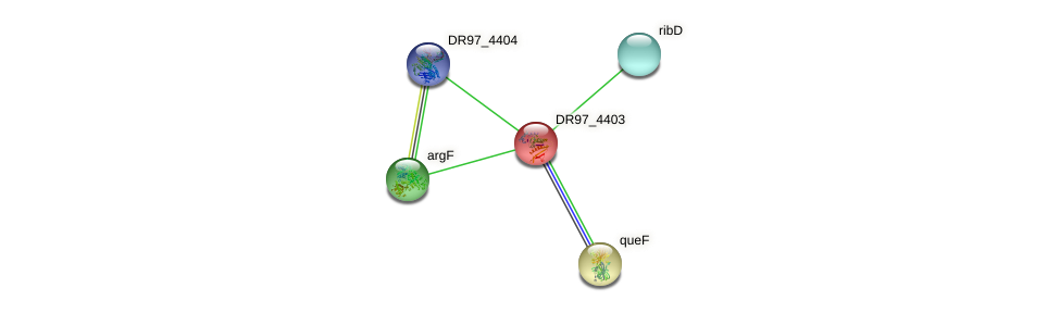 DR97_4403 protein (Pseudomonas aeruginosa) - STRING interaction network