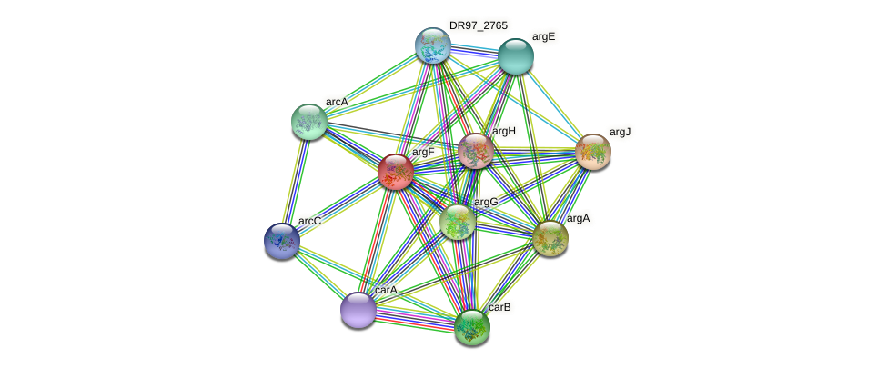 DR97_4405 protein (Pseudomonas aeruginosa) - STRING interaction network