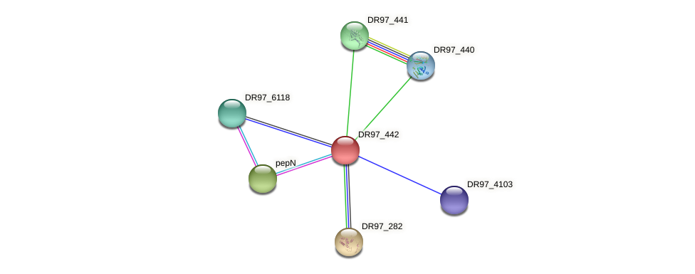 DR97_442 protein (Pseudomonas aeruginosa) - STRING interaction network