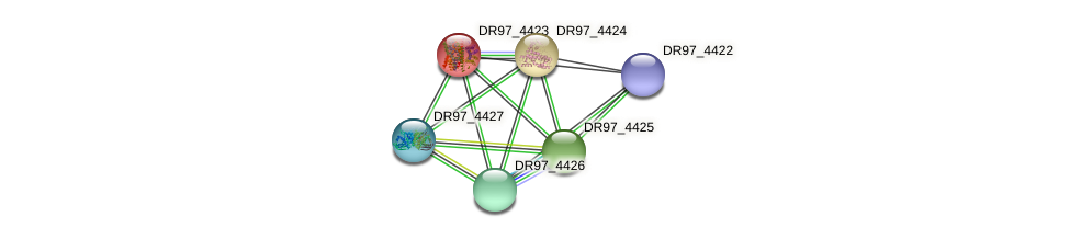 DR97_4423 protein (Pseudomonas aeruginosa) - STRING interaction network