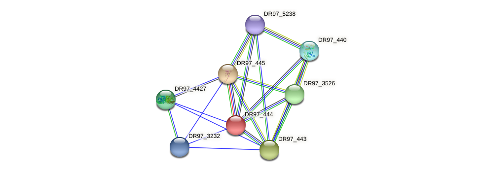 DR97_444 protein (Pseudomonas aeruginosa) - STRING interaction network