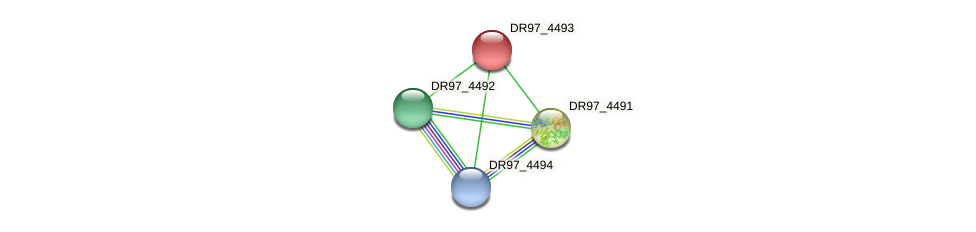 DR97_4493 protein (Pseudomonas aeruginosa) - STRING interaction network
