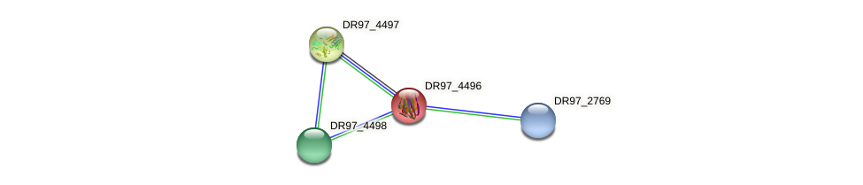 DR97_4496 protein (Pseudomonas aeruginosa) - STRING interaction network