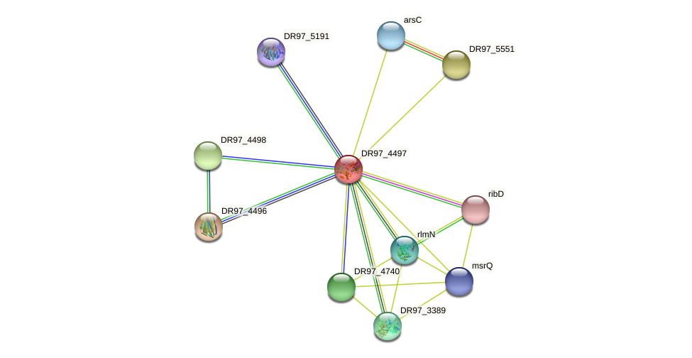 DR97_4497 protein (Pseudomonas aeruginosa) - STRING interaction network