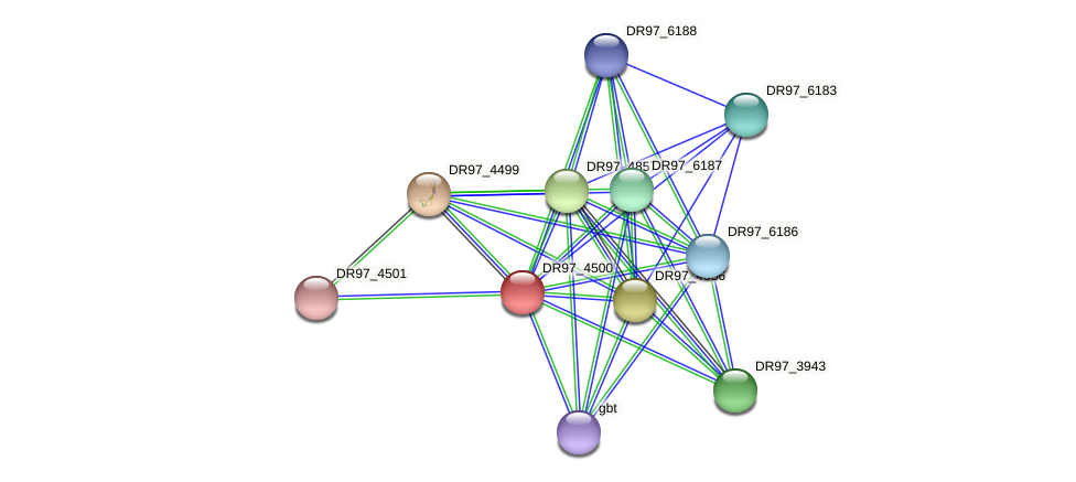 DR97_4500 protein (Pseudomonas aeruginosa) - STRING interaction network